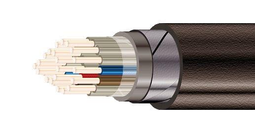 kontrolnyj-kabel-bronirovannyj-kvbbshv